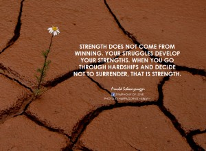 Your struggles develop your strengths.